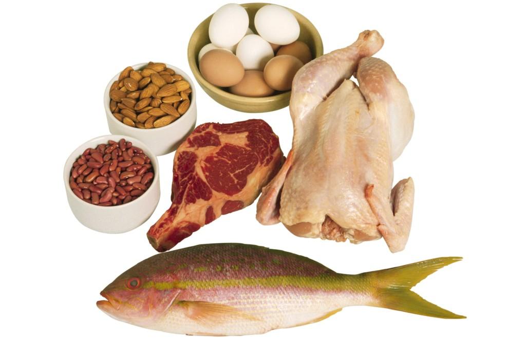 protein-only-diet