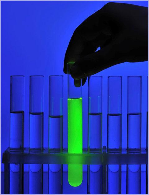 fluorescein-dye