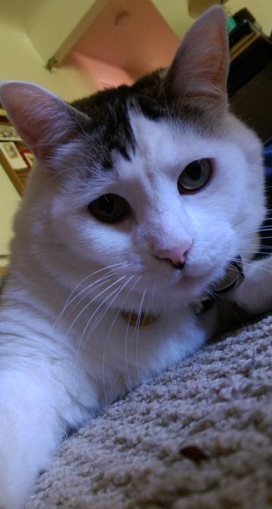 tucker-IMAG3796-selfie