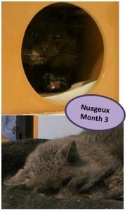 nuageux-month3